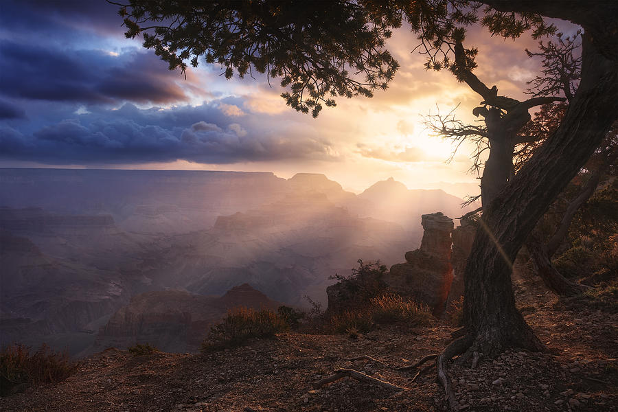 Yaki Point Photograph