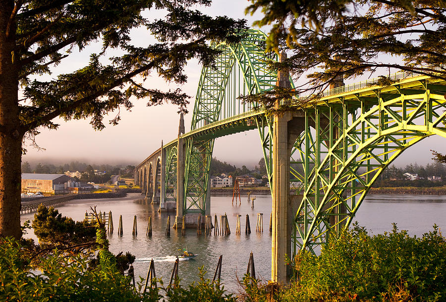 Yaquina Bay Bridge Morning Light Photograph  - Yaquina Bay Bridge Morning Light Fine Art Print