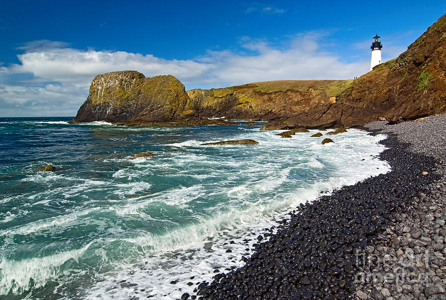Yaquina Lighthouse On Top Of Rocky Beach Photograph  - Yaquina Lighthouse On Top Of Rocky Beach Fine Art Print