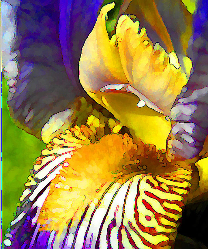 Yellow and purple iris glass art by peggy gabrielson for Purple and yellow painting