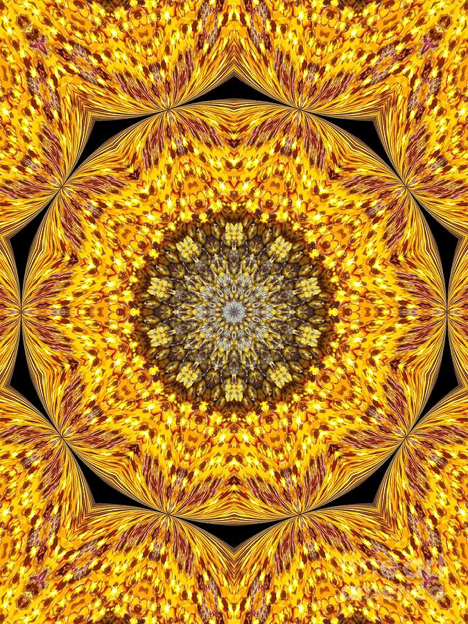Yellow Burst  Photograph  - Yellow Burst  Fine Art Print