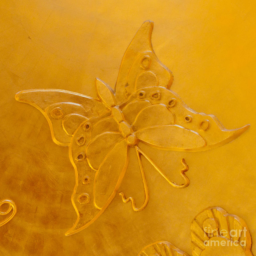 Yellow Butterfly Photograph  - Yellow Butterfly Fine Art Print