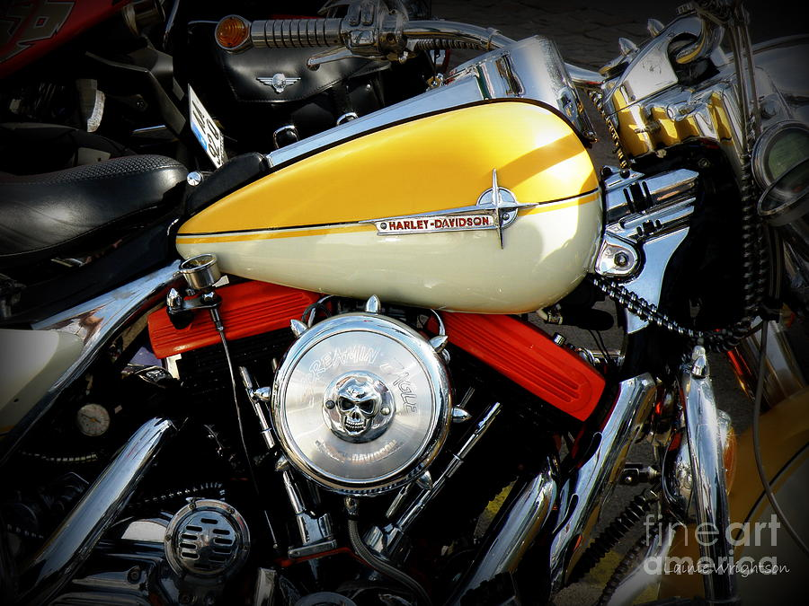 Harley Davidson Photograph - Yellow Harley by Lainie Wrightson