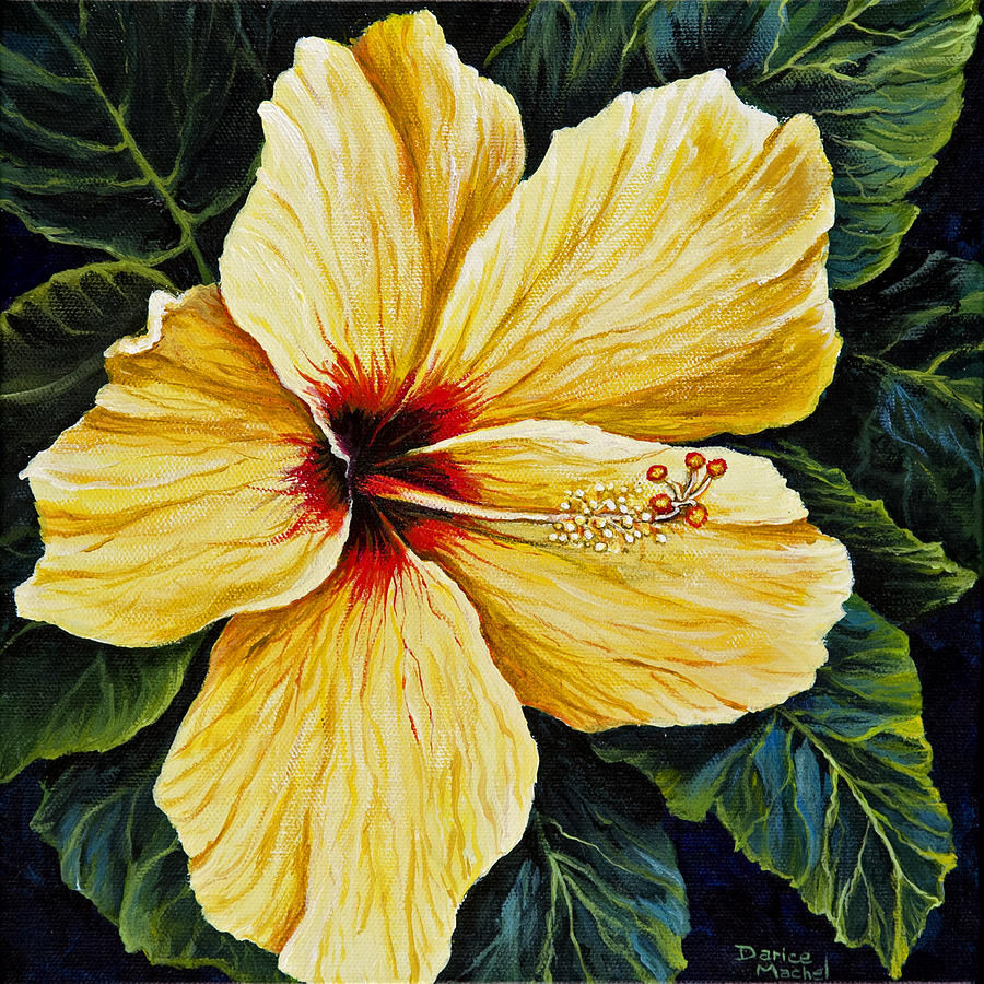 Yellow Hibiscus Painting by Darice Machel McGuire