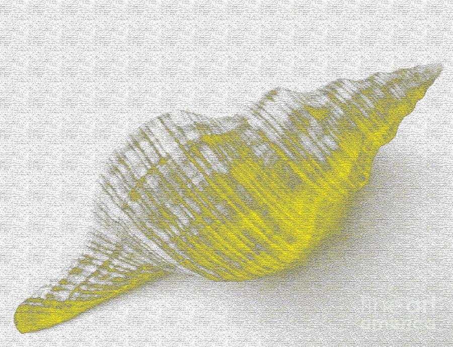Yellow Digital Art - Yellow Seashell by Carol Lynch