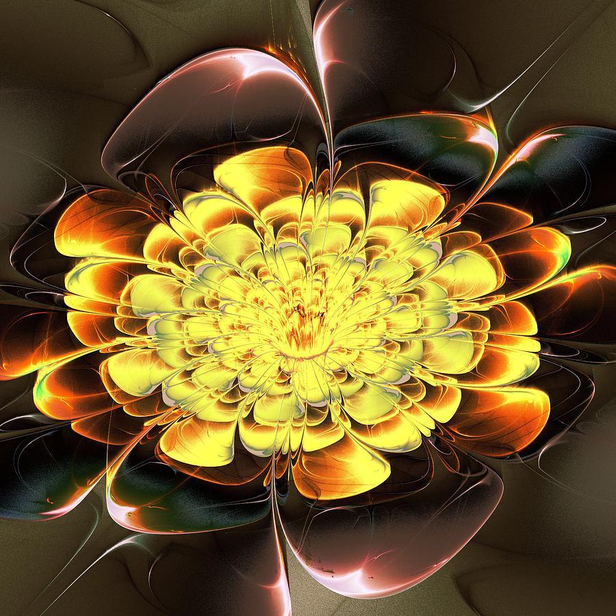 Plant Digital Art - Yellow Water Lily by Anastasiya Malakhova