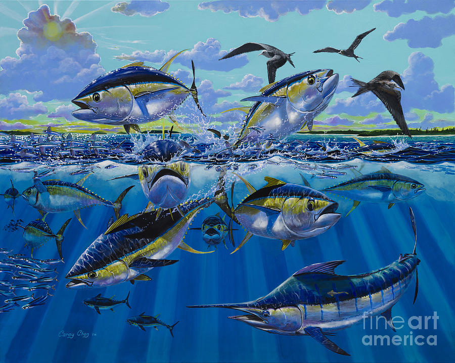 Yellowfin Tunas Painting - Yellowfin Run Off002 by Carey Chen