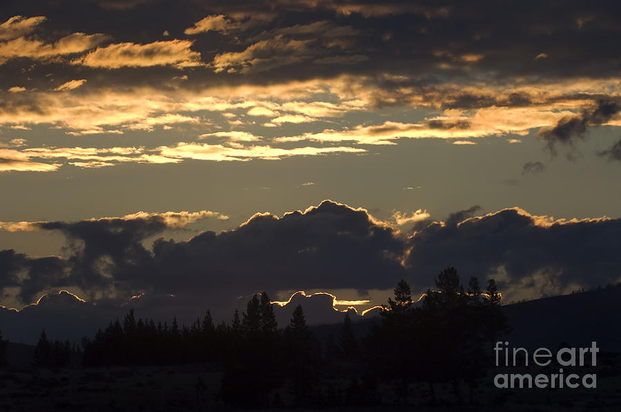 Yellowstone 1st Light Photograph  - Yellowstone 1st Light Fine Art Print