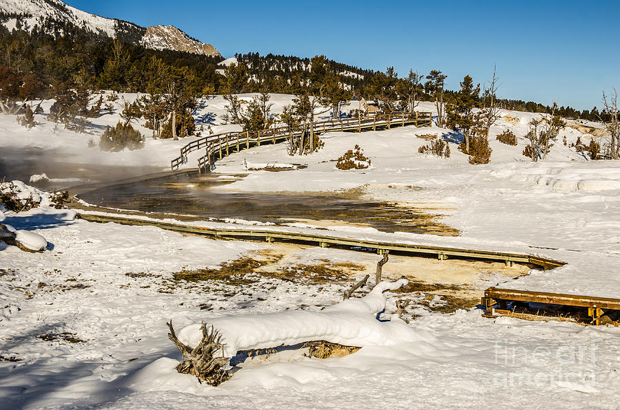 Yellowstone Hot Spring Photograph
