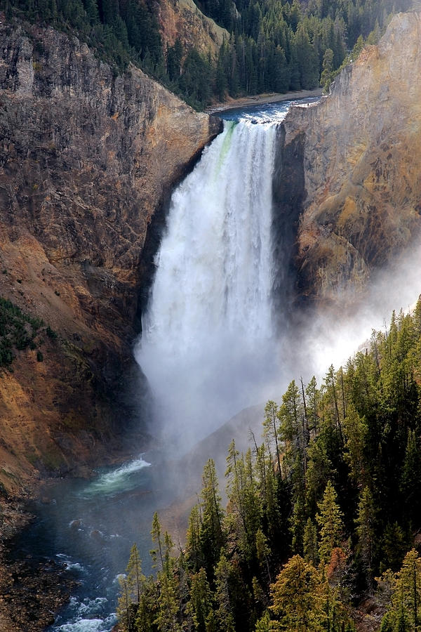 Yellowstone Waterfall Photograph  - Yellowstone Waterfall Fine Art Print