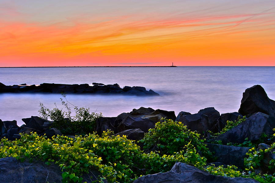 Yes Its Lake Erie Photograph