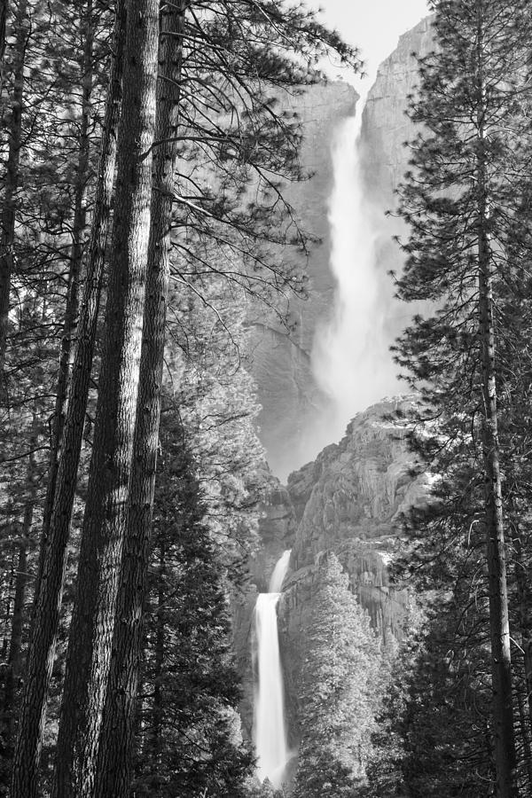 Yosemite Photograph - Yosemite Falls Black And White by Bruce Gourley