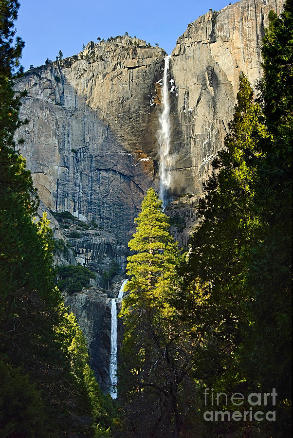 Yosemite Falls With Late Afternoon Light In Yosemite National Park. Photograph  - Yosemite Falls With Late Afternoon Light In Yosemite National Park. Fine Art Print