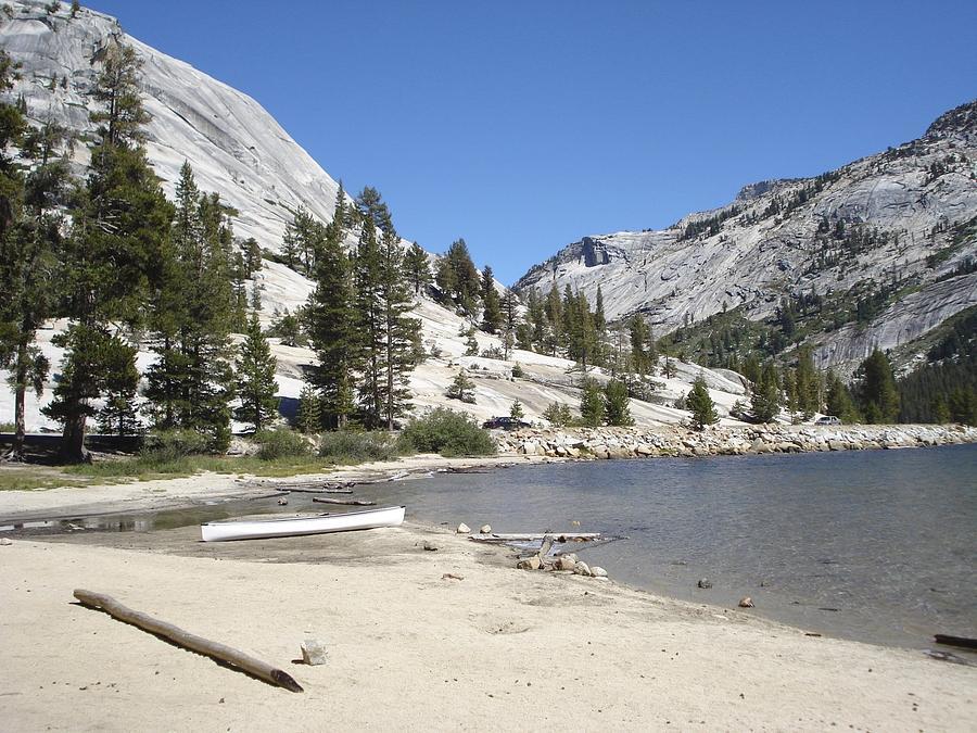 Yosemite Photograph