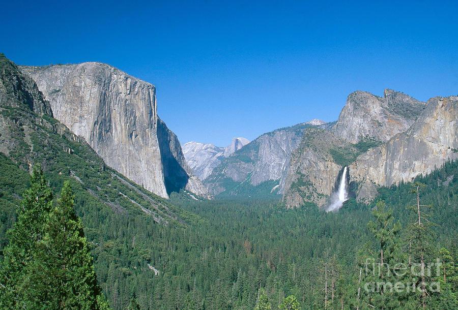 El Capitan Photograph - Yosemite Valley by David Davis