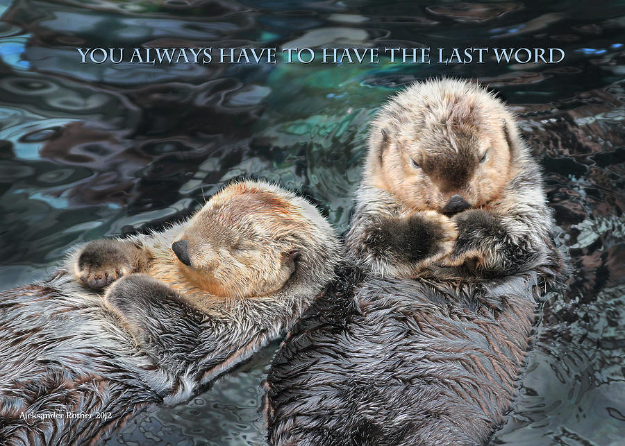 You Always Have To Have The Last Word W/title Photograph  - You Always Have To Have The Last Word W/title Fine Art Print