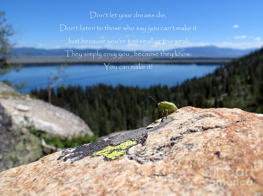 You Can Make It. Inspiration Point. Photograph  - You Can Make It. Inspiration Point. Fine Art Print