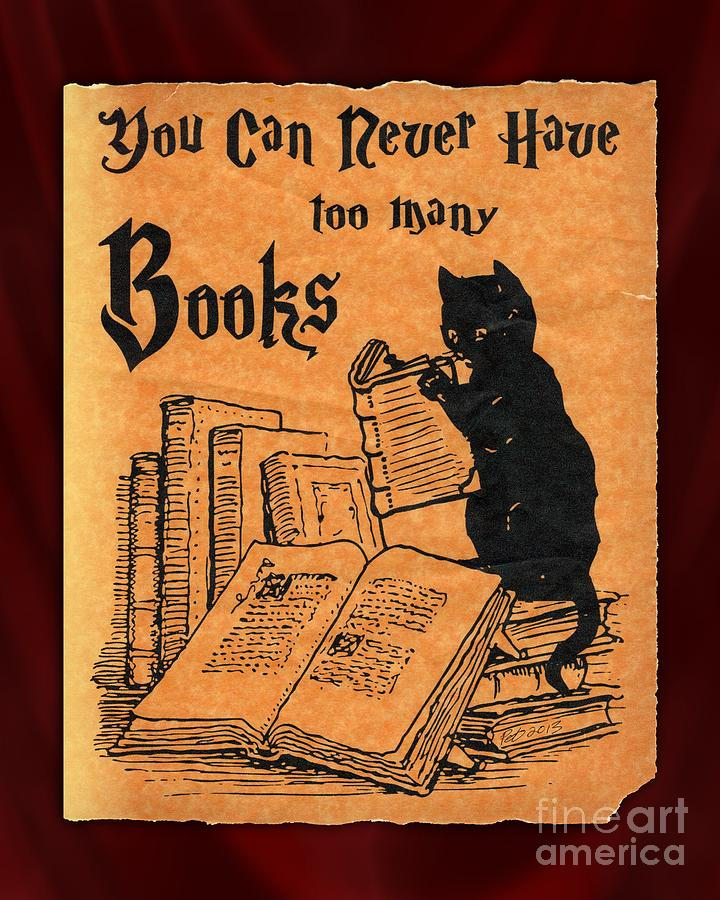 You Can Never Have Too Many Books Drawing by Pet Serrano