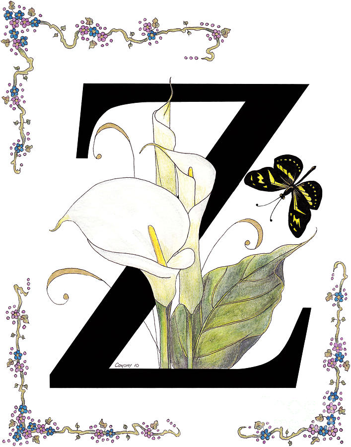 Z Is For Zantedeschia And A Zebra Butterfly Painting  - Z Is For Zantedeschia And A Zebra Butterfly Fine Art Print