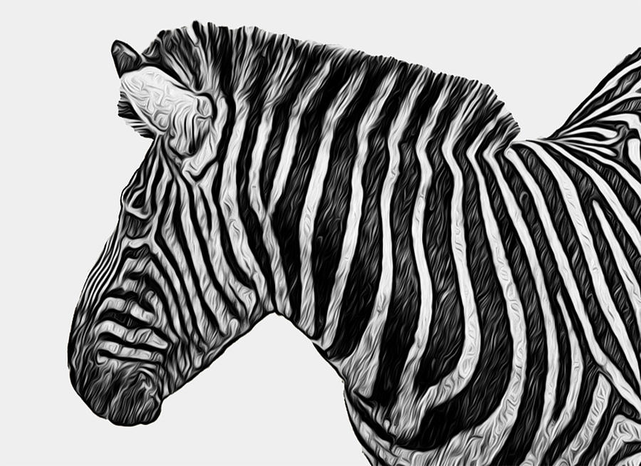 Zebra - Happened At The Zoo Painting