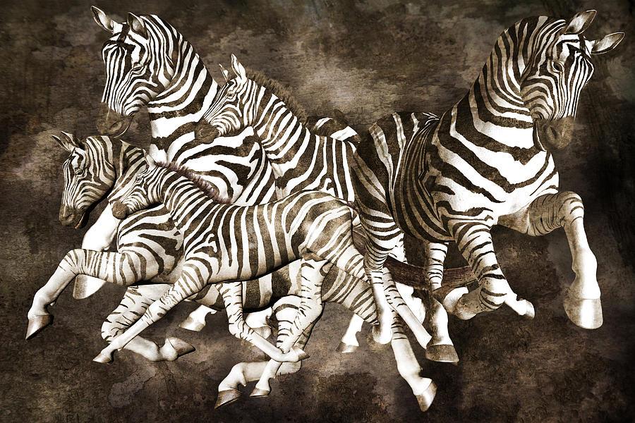Zebras Digital Art