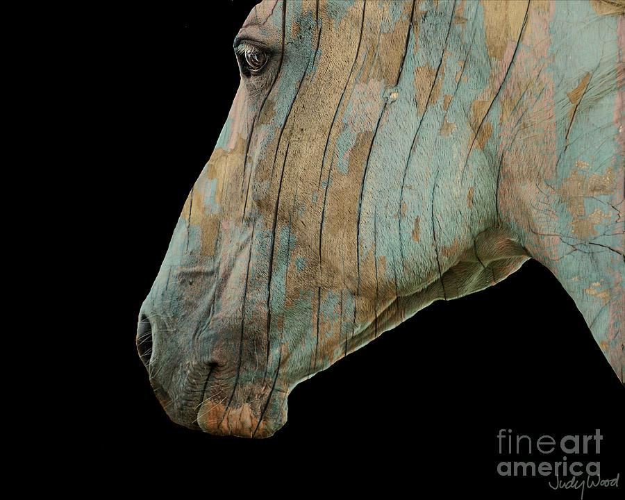 Horse Digital Art - Zeniah Variation 2 by Judy Wood