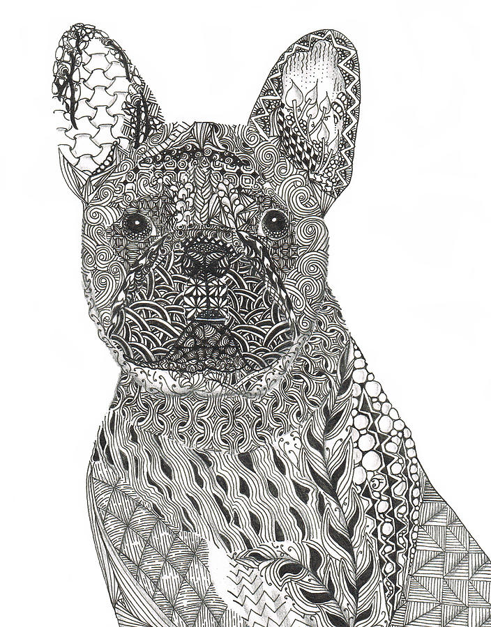 Zentangle Inspired French Bull Dog is a photograph by Dianne Ferrer ...