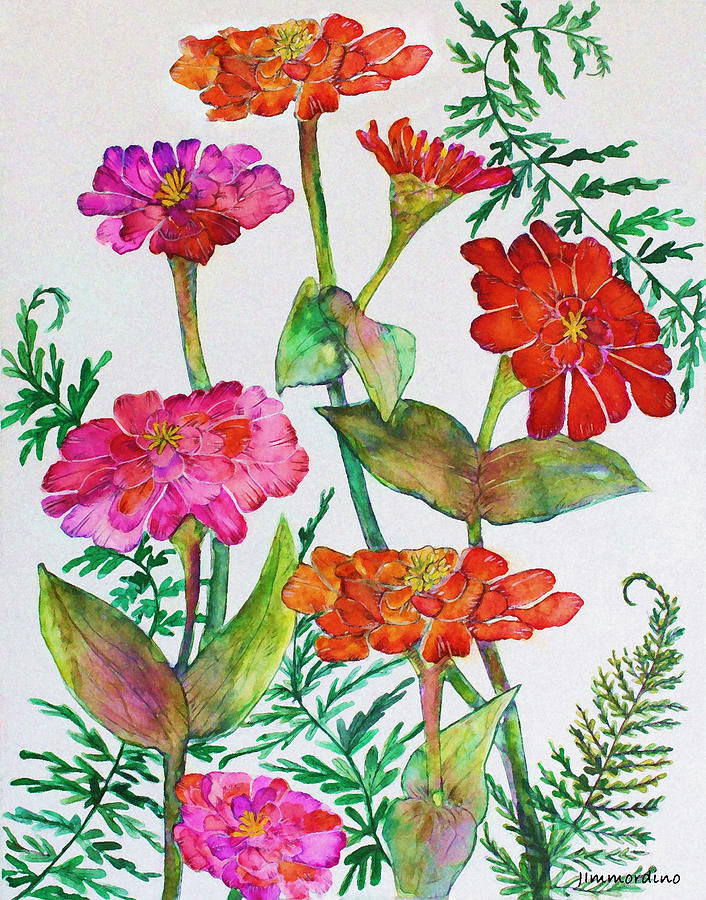 Zinnia Painting - Zinnia And Ferns by Janet Immordino