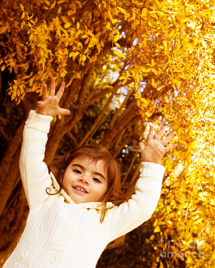 Baby Girl In Autumn Park Photograph  -  Baby Girl In Autumn Park Fine Art Print