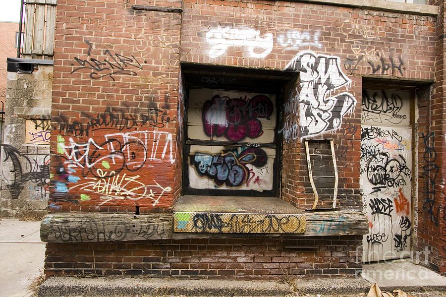 Downtown Toronto  Photograph