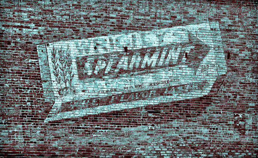  Gum On Brick Blue Photograph  -  Gum On Brick Blue Fine Art Print