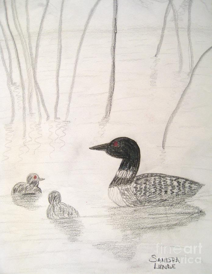 Loon Float Drawing