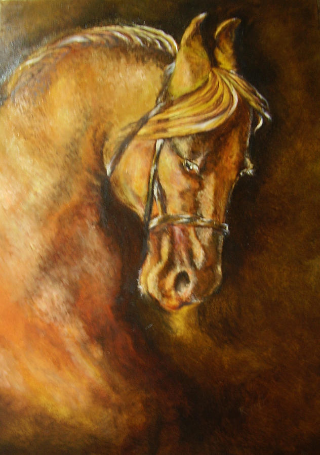 Marwari Stallion Painting  -  Marwari Stallion Fine Art Print