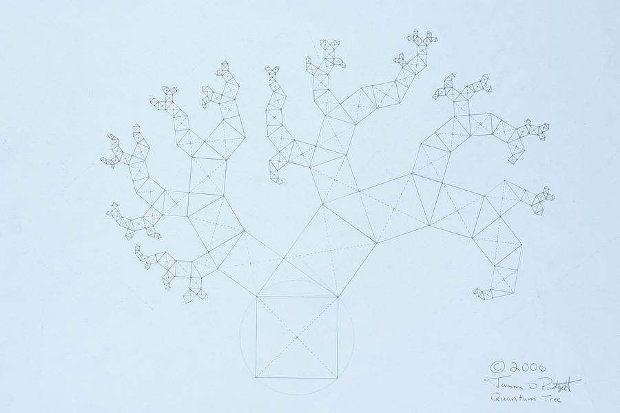 Quantum Tree Drawing  -  Quantum Tree Fine Art Print