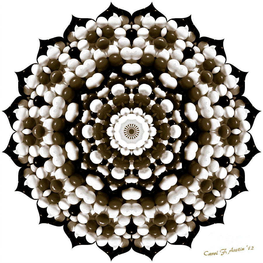 Sunflower Shape Kaleidoscope  Photograph