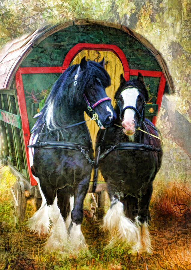 Horse.gypsy Cobs Photograph -  Travellers by Trudi Simmonds
