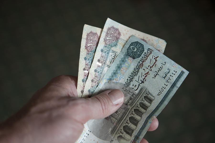 A Hand Holds Egyptian Pounds In Cash Photograph  - A Hand Holds Egyptian Pounds In Cash Fine Art Print