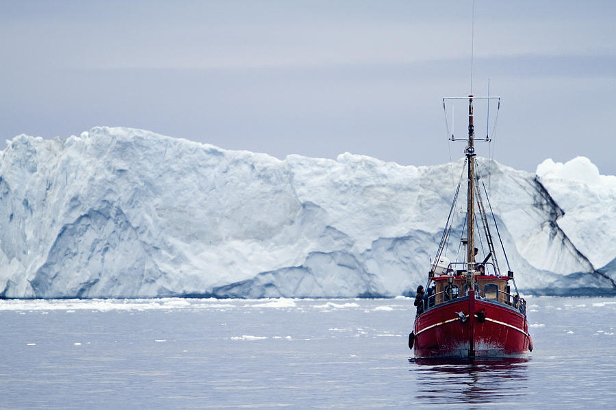 A Midnight Cruise Around The Ilulissat Photograph