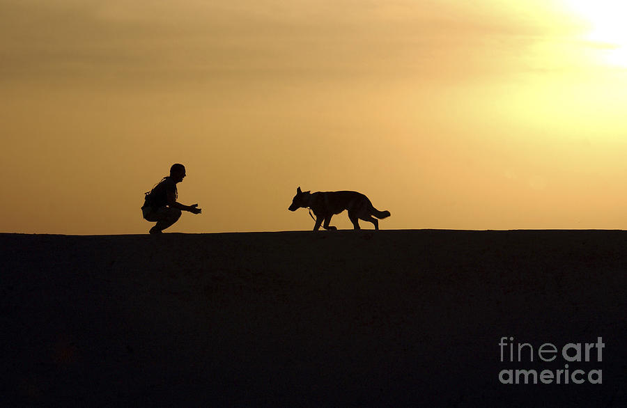 A Military Working Dog And His Handler Photograph