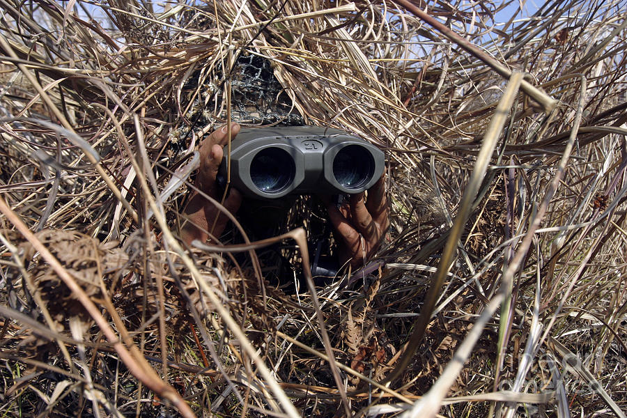 A Scout Observer Practices Observation Photograph