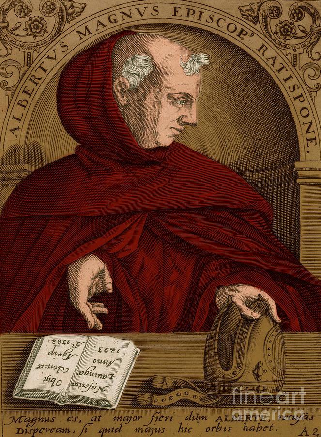 Albertus Magnus, Medieval Philosopher Photograph