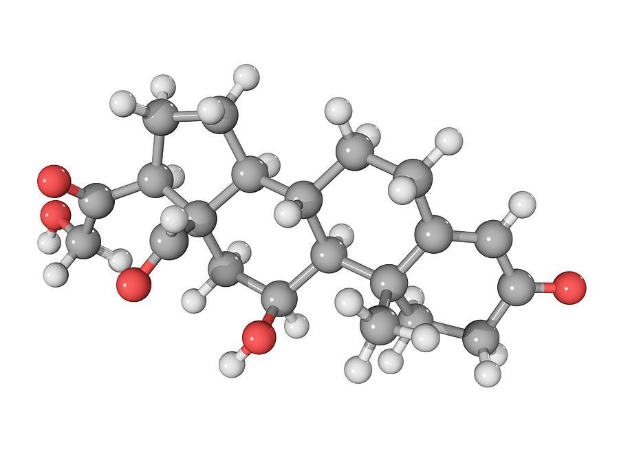 Aldosterone Molecule Photograph by Laguna Design