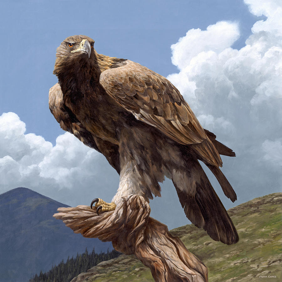 Golden Eagle Hunting Wallpaper Alpine Hunter PaintingGolden Eagle Hunting Wallpaper