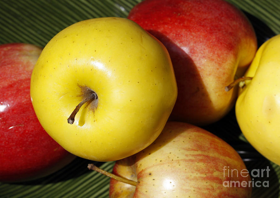 An Apple A Day Photograph
