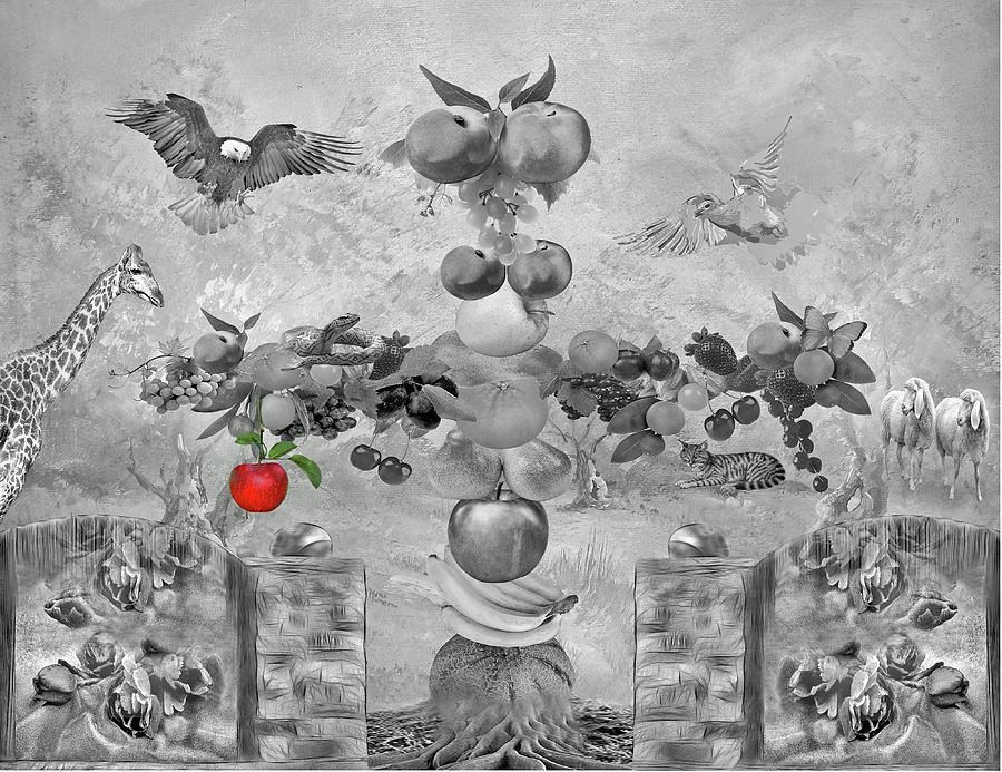 Apple Of Knowledge Photograph  - Apple Of Knowledge Fine Art Print