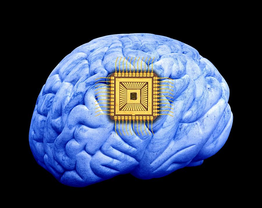 Brain Photograph - Artificial Intelligence And Cybernetics by Victor De Schwanberg