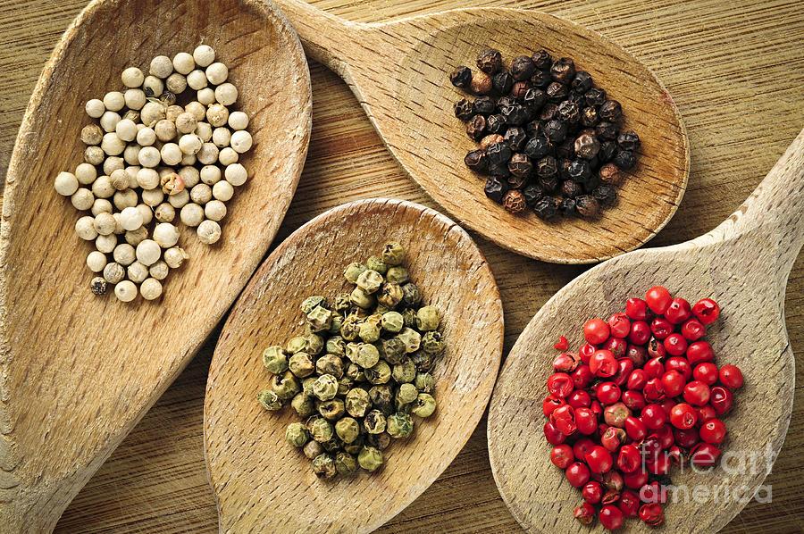 Peppercorns Photograph - Assorted Peppercorns by Elena Elisseeva