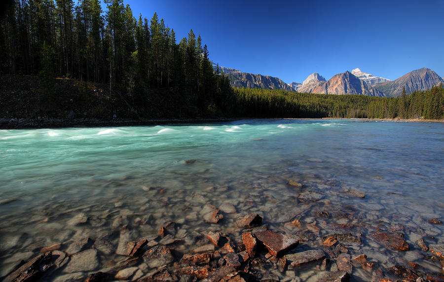 Athabasca River In Jasper National Park Digital Art  - Athabasca River In Jasper National Park Fine Art Print