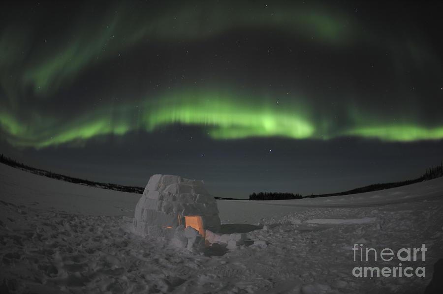 Aurora Borealis Over An Igloo On Walsh Photograph