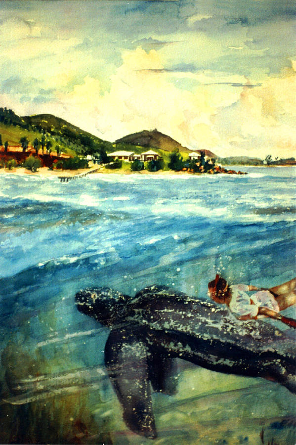 Back To Culebra Island Puerto Rico Painting